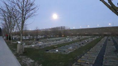 صورة عدد وفيات الكورونا بين مسلمي الدنمارك يصل إلى 13 حالة